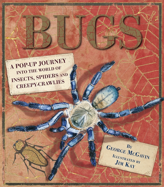 Bugs by George McGavin