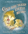 Can-t-You-Sleep-Little-Bear