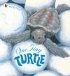 One-Tiny-Turtle