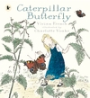 Caterpillar-Butterfly
