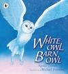 White-Owl-Barn-Owl