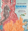 Seahorse-The-Shyest-Fish-in-the-Sea
