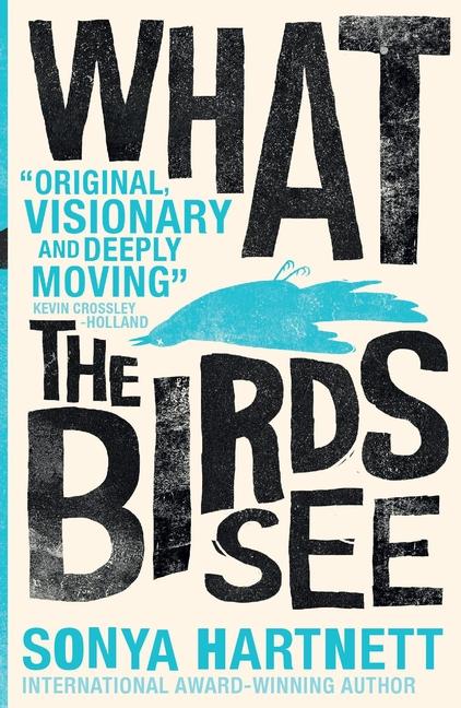 What the Birds See by Sonya Hartnett