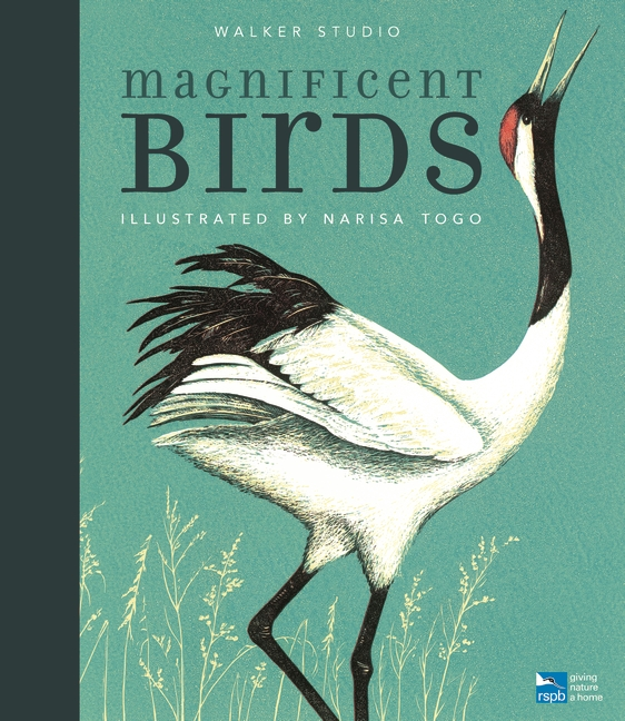 Magnificent Birds by