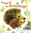 Say-Hi-to-Hedgehogs