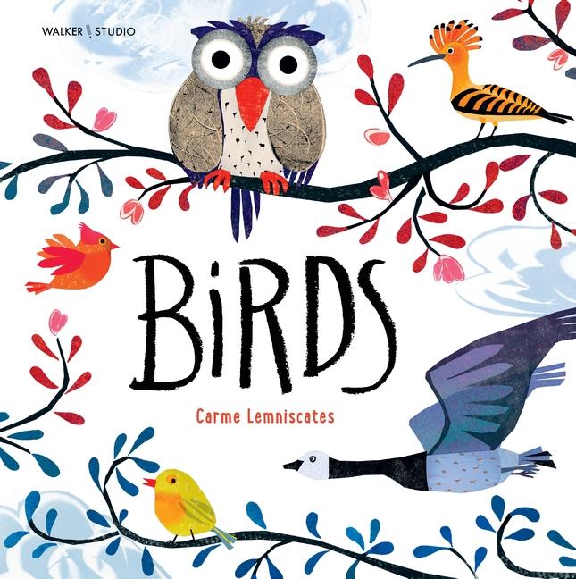 Birds by Carme Lemniscates