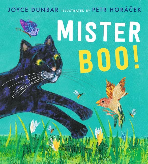 Mister Boo! by Joyce Dunbar