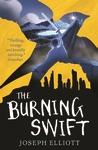 The-Burning-Swift-Shadow-Skye-Book-Three